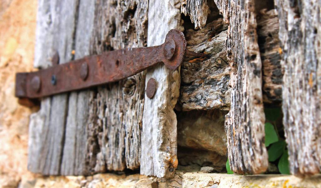 Foto Holz morsch verrottet Holzschutz